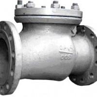 Клапан обратный поворотный 19с11нж